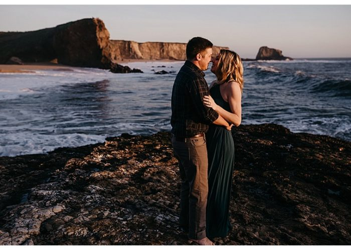 Danyelle + Cameron // Santa Cruz Proposal | Davenport Engagement Photography